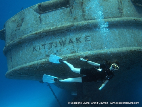 10-12-12_-_trinity_caves_kittiwake-004