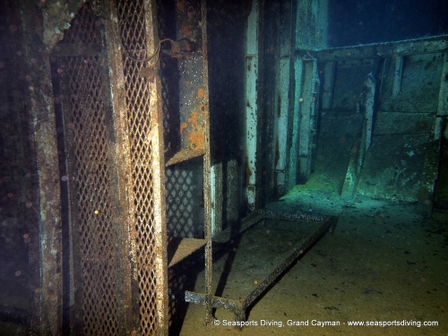 10-12-12_-_trinity_caves_kittiwake-010
