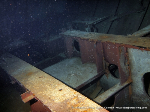 10-12-12_-_trinity_caves_kittiwake-012