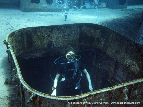 10-12-12_-_trinity_caves_kittiwake-016