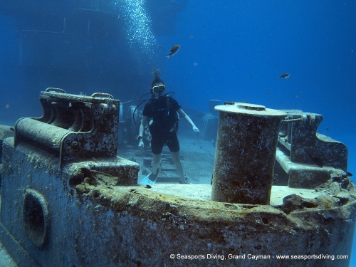 10-12-12_-_trinity_caves_kittiwake-018