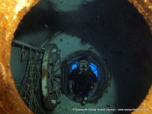 10-12-12_-_trinity_caves_kittiwake-026