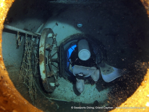 10-12-12_-_trinity_caves_kittiwake-028