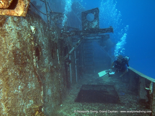 10-12-12_-_trinity_caves_kittiwake-029