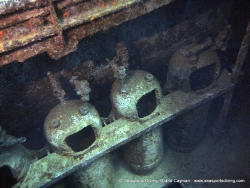 10-12-12_-_trinity_caves_kittiwake-031