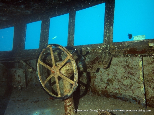 10-12-12_-_trinity_caves_kittiwake-035
